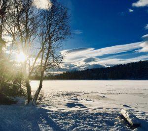 Vinteridyll. Snø på islagt vann.