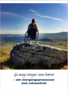 Ung kvinne i rullestol på toppen av et fjell. Sitter med ryggen til og ser utover fjellandskapet.