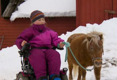Jente i elektrisk rullestol leier en liten ponni.
